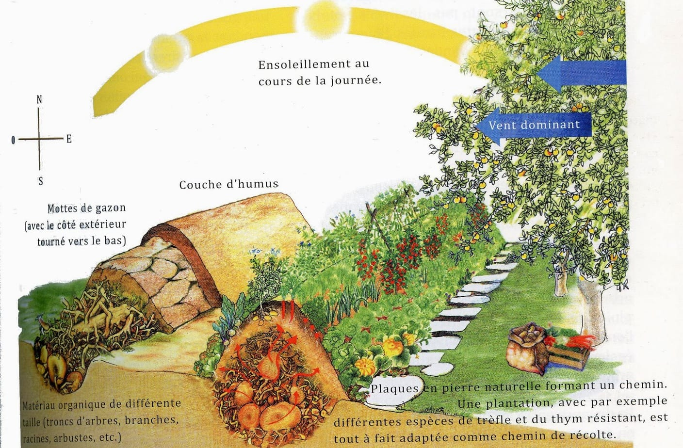 permaculture r aliser une butte auto fertile en 4 tapes. Black Bedroom Furniture Sets. Home Design Ideas