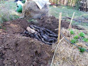 Butte permaculture etape 1