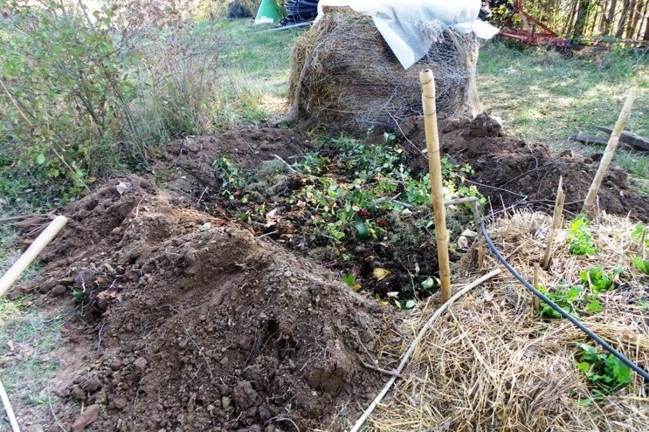 Butte permaculture étape 2